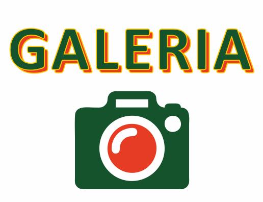 galeria2014-avatar